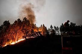 dep-Víctimas-del-incendio-de-Portugal-esquela-online-1